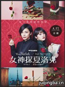 女神探夏洛克剧情介绍(1-8全集)